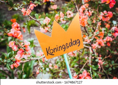 Paper cut crown with an inscription Koningsdag against the background of flowers