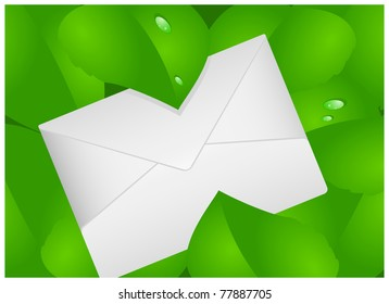 Paper envelope is located among the green leaves with drops of dew