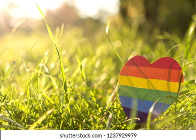 paper heart painted in rainbow paint LGBT in the grass on the background of the sun's rays. LGBTQ concept, for lesbian, gay, bisexual, transgender, and queer people