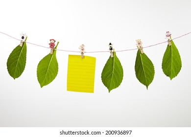 paper notes hanging on on the rope with clothespins