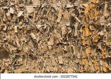Paper pile and piece of cardboard at the recycle industry paper plant