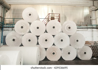Paper production plant. Plant on production of paper towels.