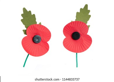 Paper red poppy used to symbolise Remembrance Sunday