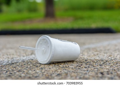 paper soft drink cup with plastic lid and straw thrown on the side of the road - littering concept