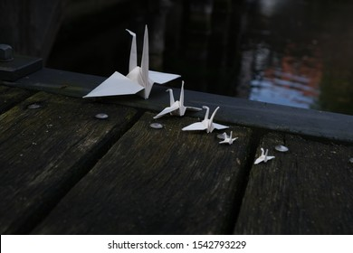 Paper swans in front of different of waters