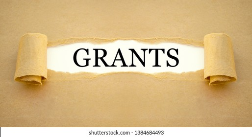 Paper work with government grant to finance the setting up of a new enterprise