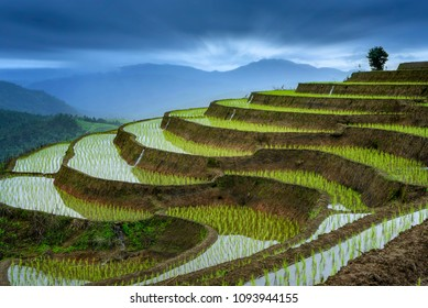 Pa-pong-peang rice terrace north Thailand