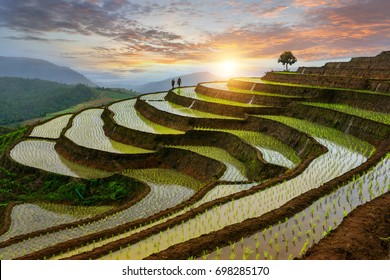 Pa-pong-peang rice terrace north Thailand