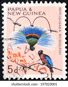 PAPUA NEW GUINEA - CIRCA 1964: A used postage stamp from Papua New Guinea illustrating Native Birds, issued in 1964.