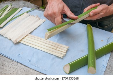 Papyrus artisan in Syracuse cutting the stem of a papyrus plant to obtain thin strips