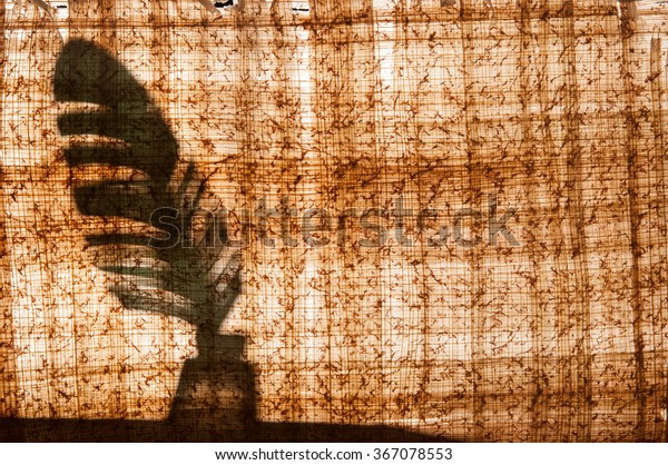 Papyrus sheet with its typical structure and texture and a quill pen behind it