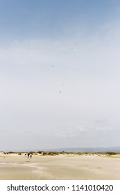 parachutes in the sky above the dessert