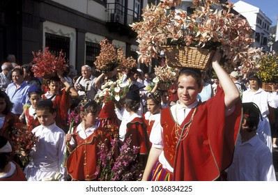 a parade with flowers at the Fower Festival or Fest da flor in the old town of Funchal on the Island of Madeira of Portugal.  Portugal, Madeira, Funchal, February, 2010.
