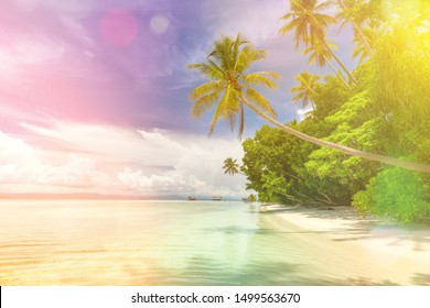 Paradise background of landscape of tropical beach - calm ocean waves, palm trees, blue sky with white clouds and nobody
