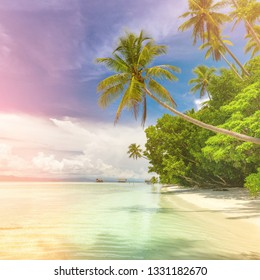 Paradise background landscape of tropical island - calm ocean waves, palm trees, blue sky with white clouds and nobody