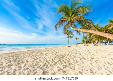 Paradise Beach also called Playa Paraiso at sunrise - beautiful and tropical caribbean coast at Tulum in Quintana Roo, Riviera Maya, Mexico