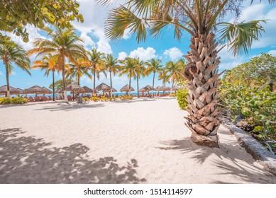 Paradise beach in the Caribbean Ocean at Cozumel Island, Mexico