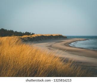 Paradise Beach Gotland