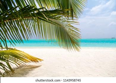 paradise Beach at Malediven