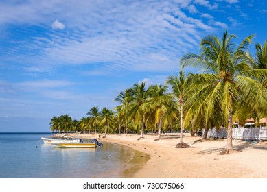 Paradise beach in Sri Lanka. Beach with small fisher boats, white sand and palm trees with blue sky. Beautiful beach in Pasikuda, Sri Lanka.