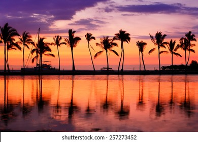 Paradise beach sunset landscape with tropical palm trees silhouettes. Summer travel vacation getaway colorful concept photo from sea ocean water at Hawaiian beach, Big Island, Hawaii, USA.