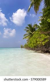 A Paradise called Maldives!