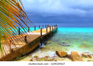Paradise coastline with pier and palm tree and dark clouds. Tropical rain coming from the ocean. Stormy weather. Romantic beach with stones and palm.