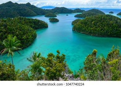 Paradise lagoon surrounded by green rocks. Azure water. Dreaming view.  Raja Ampat, West Papua, Indonesia.