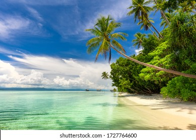 Paradise landscape of tropical beach - calm ocean waves, palm trees, blue sky with white clouds and nobody - Shutterstock ID 1727764600