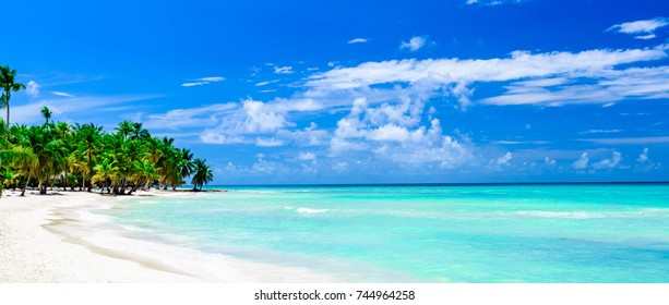 Paradise nature, Caribbean sea on a tropical beach with green tree palm