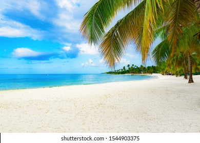Paradise nature, sea on a tropical beach with green tree