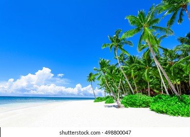 Paradise nature, sea on a tropical beach with green tree palm