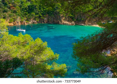 A paradise on Earth. A beach, a yatch and transparent water.