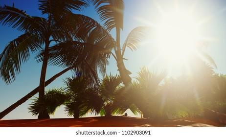 Paradise on Hawaii Island 3d rendering