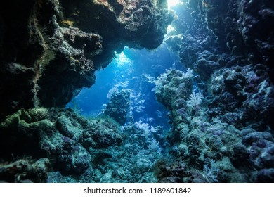 Paradise Reef Caves red sea egypt