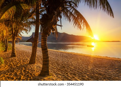 Paradise sandy beach with palm trees and mountains at sunset. Mauritius.