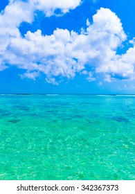 Paradise Scene Wallpaper