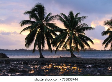 Paradise sunset with the reflection of the sky over a puddle of water and several palm trees in Huahine, French Polynesia