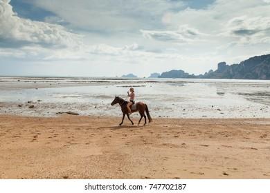 Paradise tropical beach. Beautiful woman on a horse. Horseback rider.