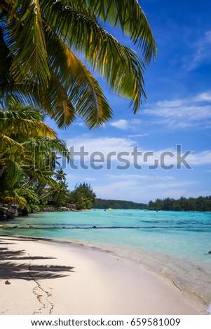 Paradise Tropical Beach Lagoon Moorea Island Stock Photo