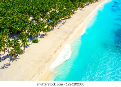 Paradise tropical island nature background. Top aerial drone view of beautiful beach with turquoise sea water and palm trees. Saona island, Dominican republic