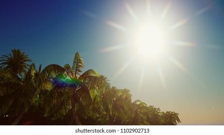 Paradise vegetation on Hawaii Island 3d rendering