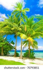 Paradise Paradise Wallpaper