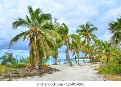 Paradise wild beach on Eleuthera island, Bahamas