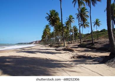 Paradisiac Coqueirinho Beach
