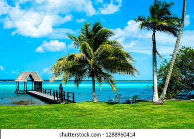 Paradisiacal view of caribbean Bacalar lagoon in Quintana Roo, Mexico. Pier, hut and palm trees.