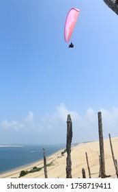 Parapente volant entre les arbres à la dune de Pyla, Pyla-sur-Mer, département de la Gironde dans la région atlantique, France.