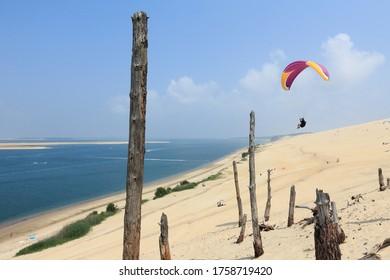 Parapente volant sur la dune de Pyla, dans des arbres morts, France