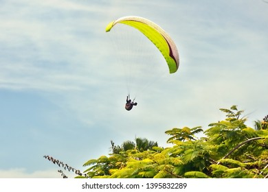 a paraglider hovers in the blue sky over green trees with a yellow sail on Tenerife