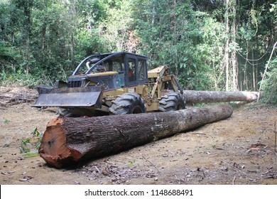 Paragominas/Para/Brazil - Nov 21, 2014: A Caterpillar Skidder 525 carrying logs extracted from a forest in the Brazilian Amazon region, in an area of legalized sustainable logging